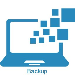 Image of a computer backup