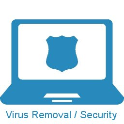 Image of a shield representing protection against computer viruses